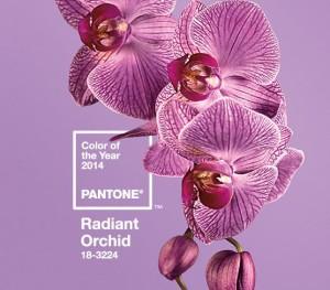 2014 Pantone Color